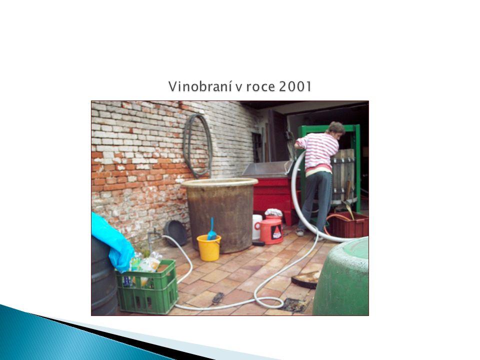  Vína z našeho vinařství jsou vyráběna převážně z vlastních hroznů, část hroznů je nakupována, zejména pro výrobu burčáku.