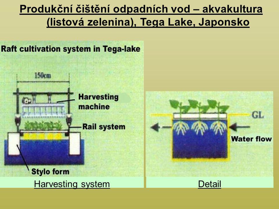 Harvesting systemDetail Produkční čištění odpadních vod – akvakultura (listová zelenina), Tega Lake, Japonsko