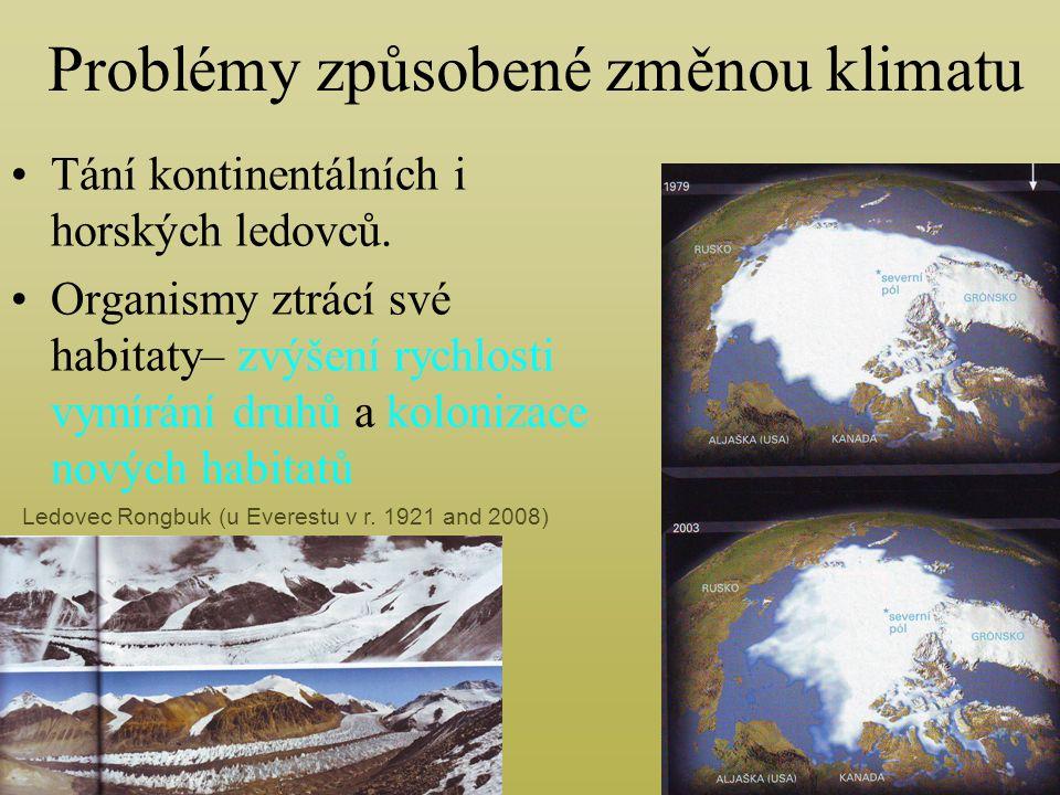 Problémy způsobené změnou klimatu Tání kontinentálních i horských ledovců.