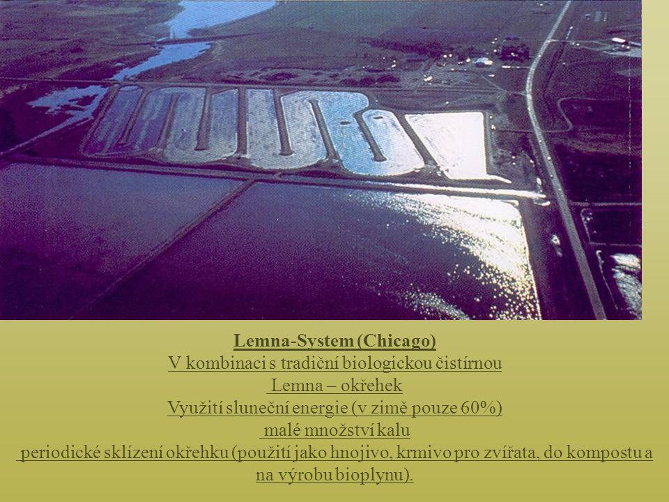 Lemna-System (Chicago) V kombinaci s tradiční biologickou čistírnou Lemna – okřehek Využití sluneční energie (v zimě pouze 60%) malé množství kalu periodické sklízení okřehku (použití jako hnojivo, krmivo pro zvířata, do kompostu a na výrobu bioplynu).