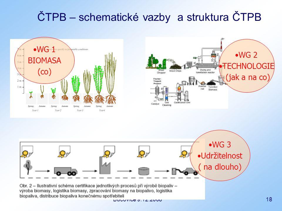 Bučovice 9.12.2008 18 ČTPB – schematické vazby a struktura ČTPB WG 2 TECHNOLOGIE (jak a na co) WG 1 BIOMASA (co) WG 3 Udržitelnost ( na dlouho)