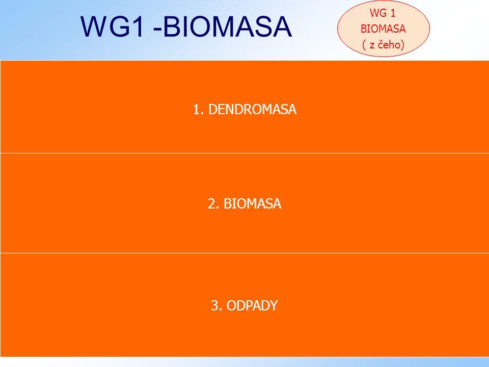 Bučovice 9.12.2008 20 WG1 -BIOMASA 1. DENDROMASA 1.1.