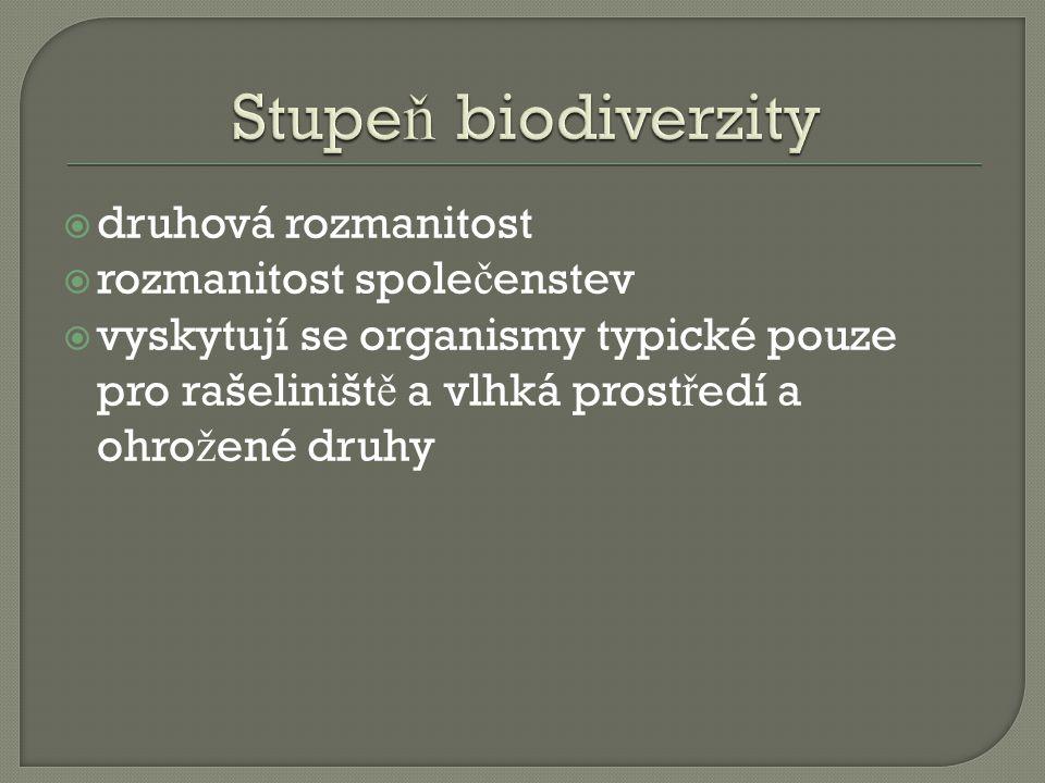  druhová rozmanitost  rozmanitost spole č enstev  vyskytují se organismy typické pouze pro rašeliništ ě a vlhká prost ř edí a ohro ž ené druhy
