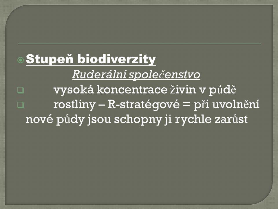  Stupeň biodiverzity Ruderální spole č enstvo  vysoká koncentrace ž ivin v p ů d ě  rostliny – R-stratégové = p ř i uvoln ě ní nové p ů dy jsou schopny ji rychle zar ů st