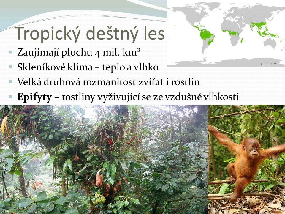 Tropický deštný les  Zaujímají plochu 4 mil. km²  Skleníkové klima – teplo a vlhko  Velká druhová rozmanitost zvířat i rostlin  Epifyty – rostliny