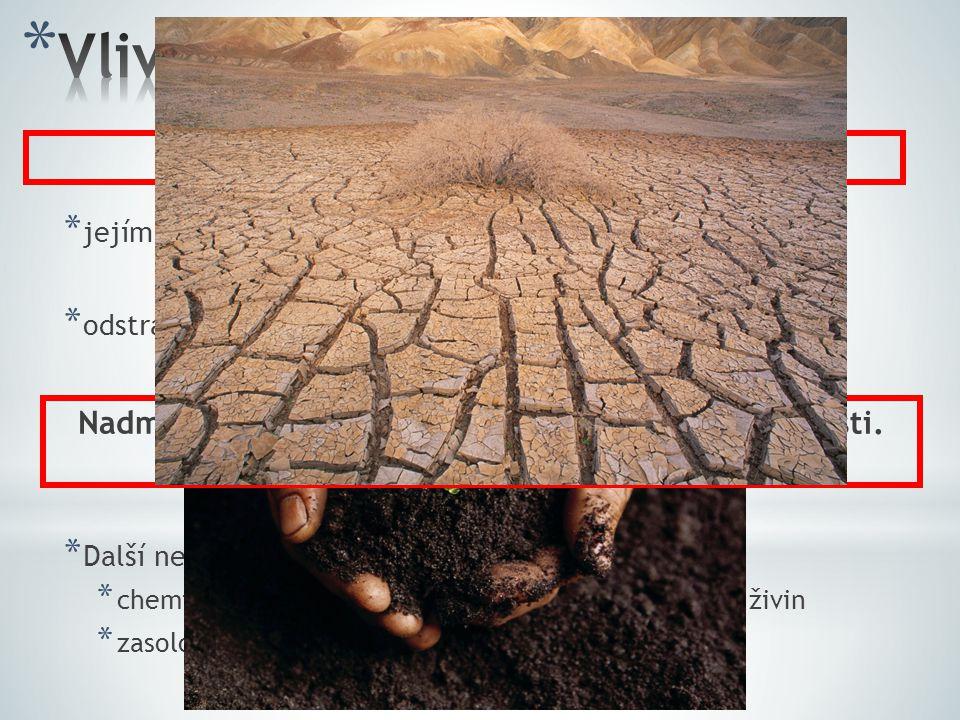 * narušení rostlinných a živočišných společenstev * snižování biologické rozmanitosti (biodiverzity) * dochází k destabilizaci ekosystémů * vypalování a kácení tropických deštných lesů * nejen v Brazílii * odlesňování mírného pásu Evropy, Ameriky a Asie * nahrazení sídly, poli, pastvinami