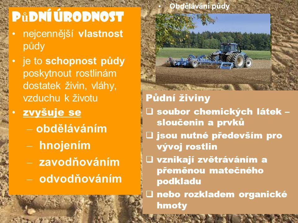 P ů dní úrodnost nejcennější vlastnost půdy je to schopnost půdy poskytnout rostlinám dostatek živin, vláhy, vzduchu k životu zvyšuje se – obděláváním
