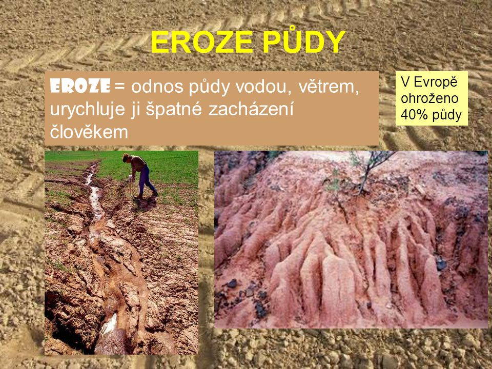 EROZE PŮDY eroze = odnos půdy vodou, větrem, urychluje ji špatné zacházení člověkem V Evropě ohroženo 40% půdy