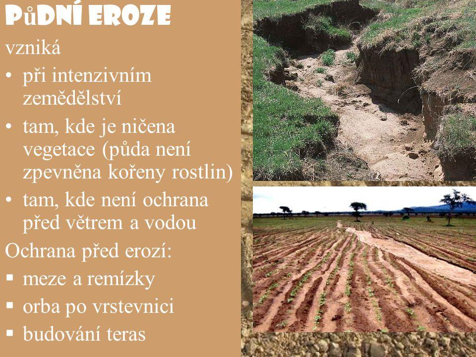 P ů dní eroze vzniká při intenzivním zemědělství tam, kde je ničena vegetace (půda není zpevněna kořeny rostlin) tam, kde není ochrana před větrem a v