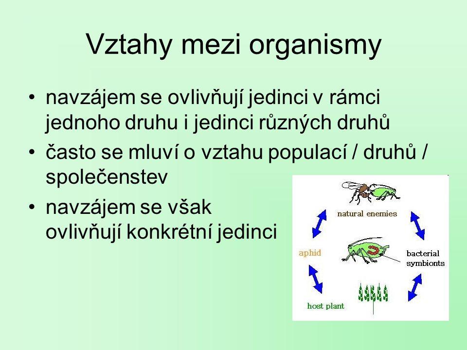 Vztahy mezi organismy navzájem se ovlivňují jedinci v rámci jednoho druhu i jedinci různých druhů často se mluví o vztahu populací / druhů / společenstev navzájem se však ovlivňují konkrétní jedinci