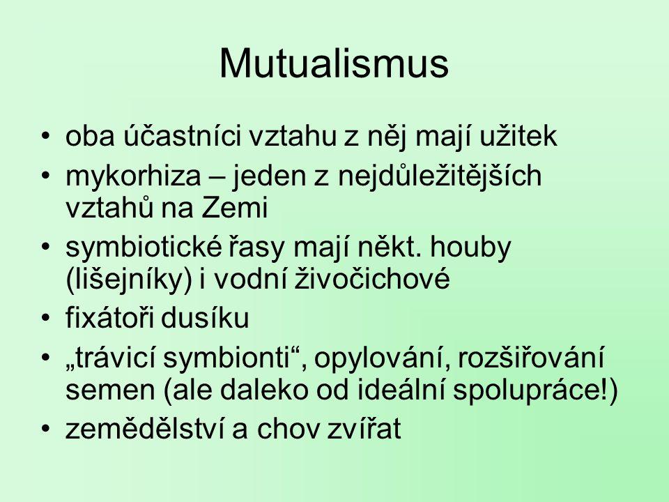 Mutualismus oba účastníci vztahu z něj mají užitek mykorhiza – jeden z nejdůležitějších vztahů na Zemi symbiotické řasy mají někt.