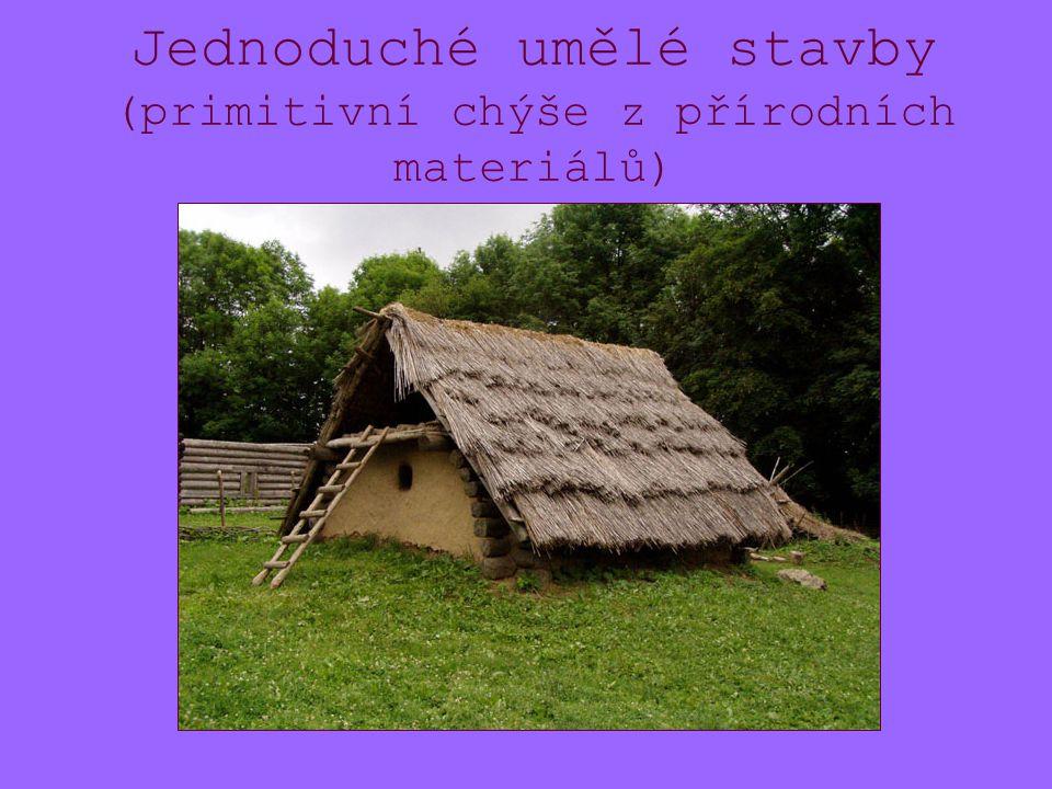 Jednoduché umělé stavby (primitivní chýše z přírodních materiálů)