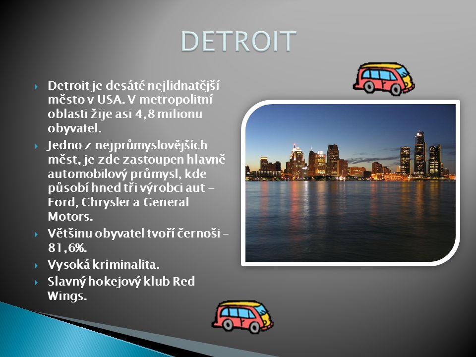  Detroit je desáté nejlidnatější město v USA. V metropolitní oblasti žije asi 4,8 milionu obyvatel.  Jedno z nejprůmyslovějších měst, je zde zastoup