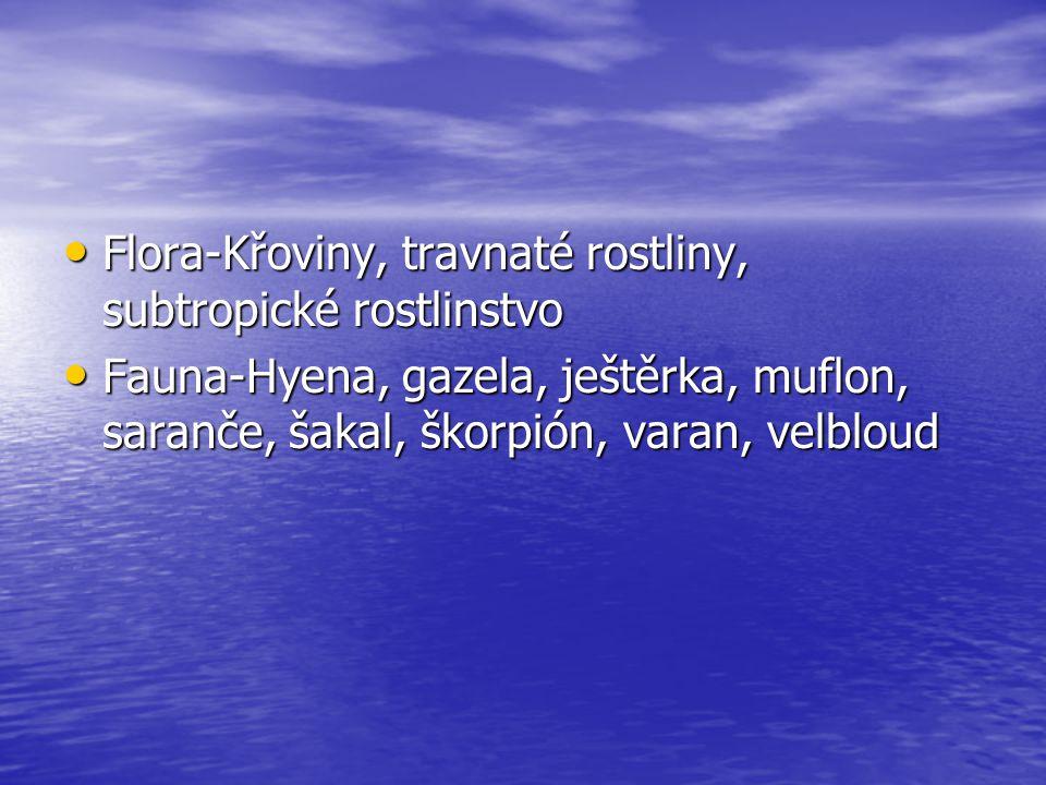 Flora-Křoviny, travnaté rostliny, subtropické rostlinstvo Flora-Křoviny, travnaté rostliny, subtropické rostlinstvo Fauna-Hyena, gazela, ještěrka, muf