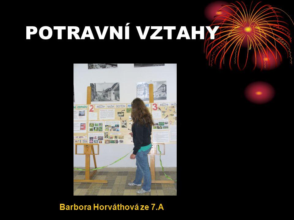 POTRAVNÍ VZTAHY Barbora Horváthová ze 7.A