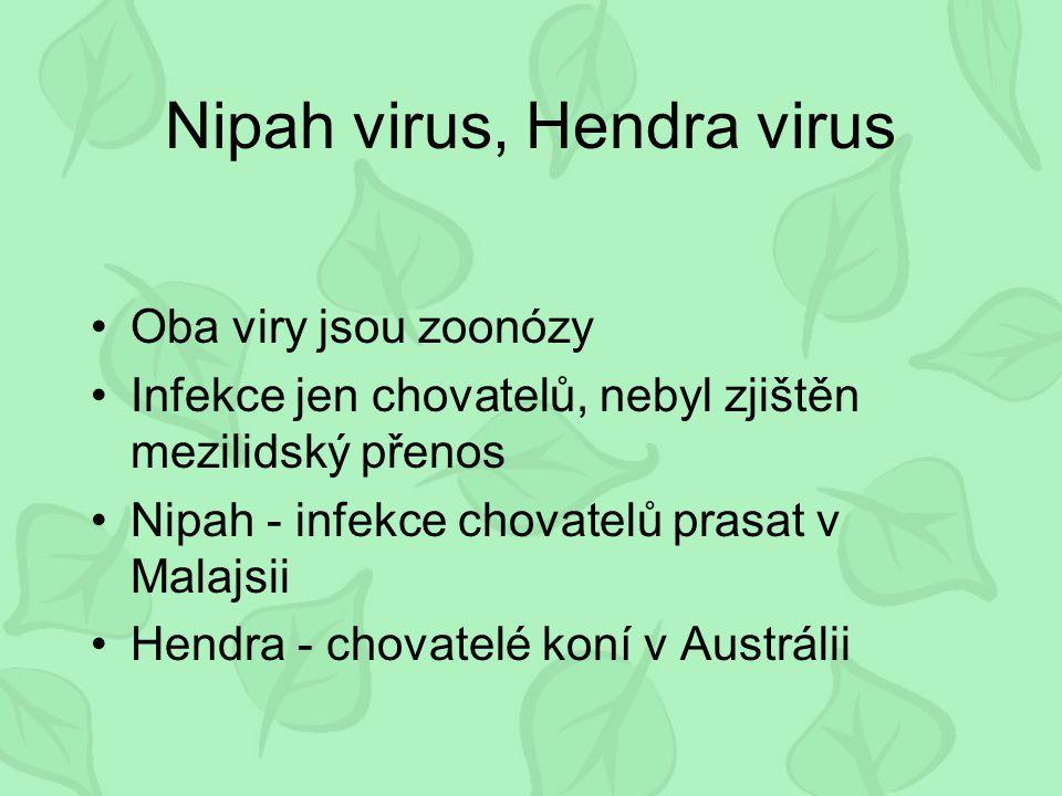 Nipah virus, Hendra virus Oba viry jsou zoonózy Infekce jen chovatelů, nebyl zjištěn mezilidský přenos Nipah - infekce chovatelů prasat v Malajsii Hendra - chovatelé koní v Austrálii