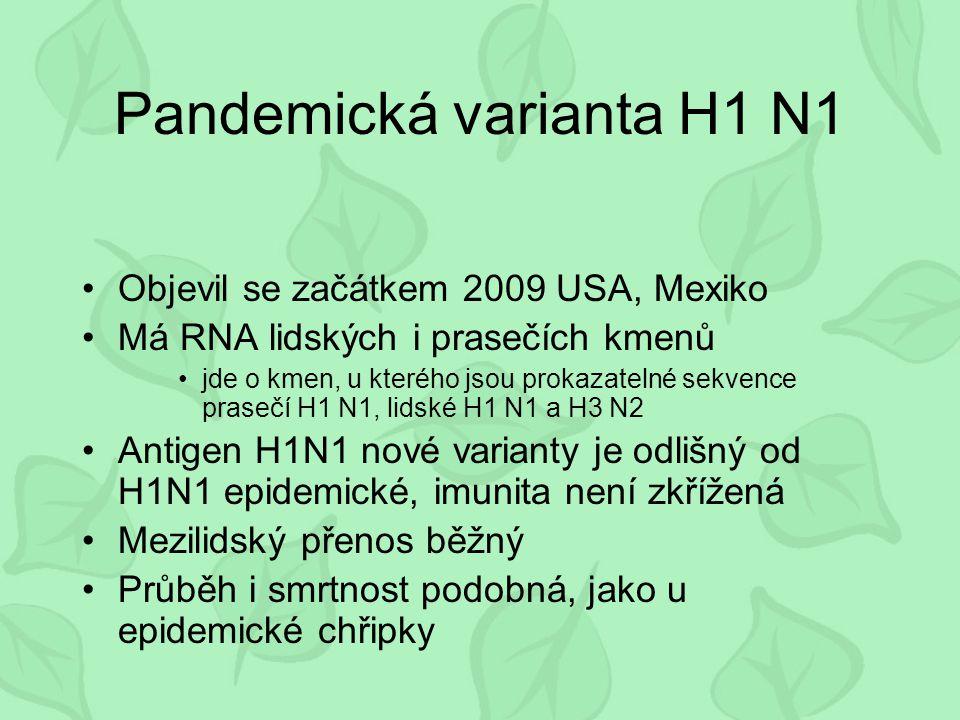 Viry parainfluenzy Závažné respirační onemocnění kojenců U starších jsou častým původcem bronchitid Imunita je nedokonalá přechodná a typově specifická Specifická terapie není