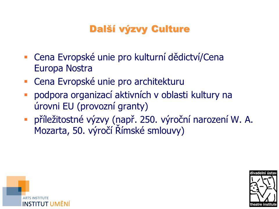 Další výzvy Culture  Cena Evropské unie pro kulturní dědictví/Cena Europa Nostra  Cena Evropské unie pro architekturu  podpora organizací aktivních v oblasti kultury na úrovni EU (provozní granty)  příležitostné výzvy (např.