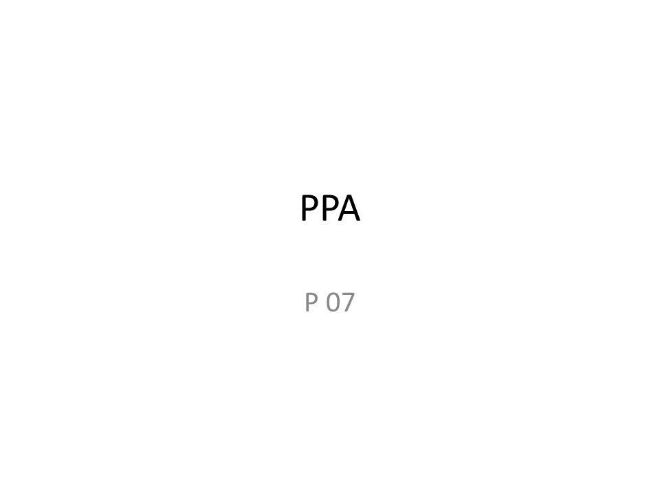 PPA P 07