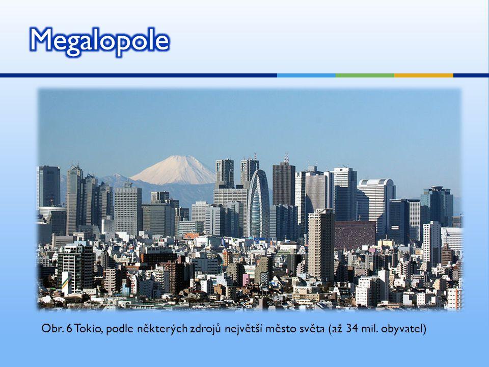 Obr. 6 Tokio, podle některých zdrojů největší město světa (až 34 mil. obyvatel)
