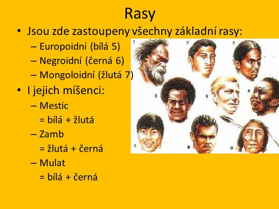 Rasy Jsou zde zastoupeny všechny základní rasy: – Europoidní (bílá 5) – Negroidní (černá 6) – Mongoloidní (žlutá 7) I jejich míšenci: – Mestic = bílá