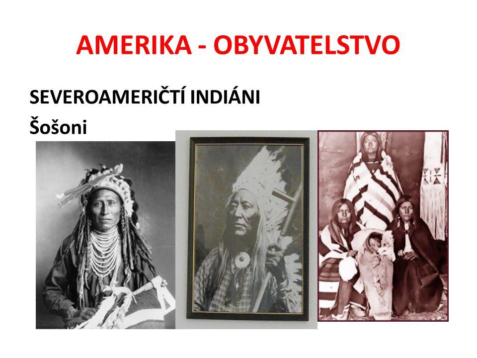 AMERIKA - OBYVATELSTVO e) Obyvatelé latinskoamerického původu jsou v Severní Americe označováni jako HISPÁNCI f) Přistěhovalci z Asie, např.