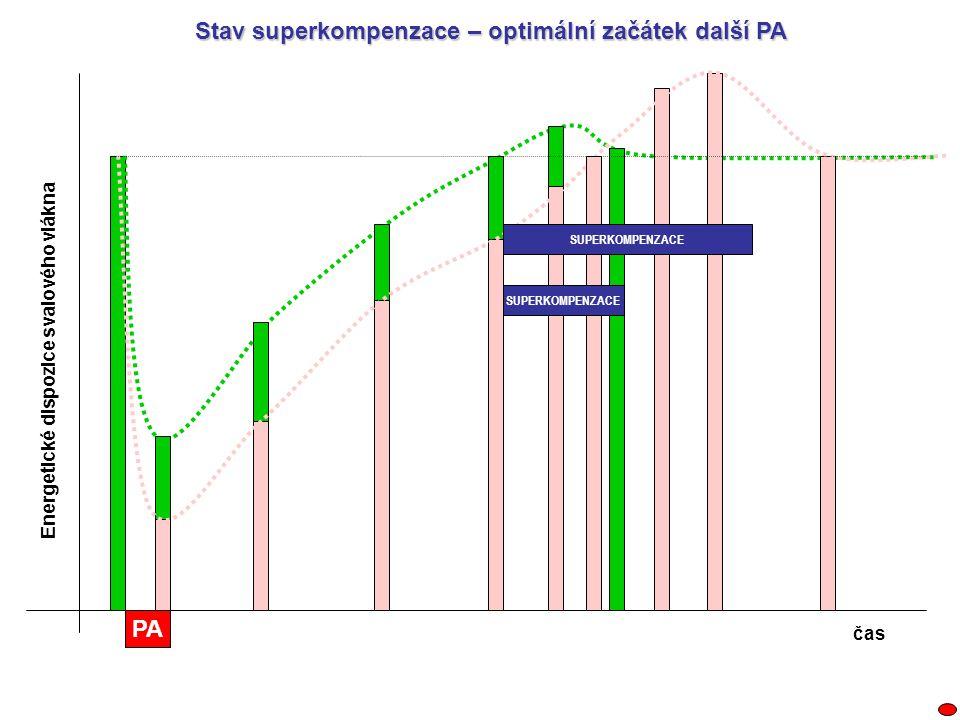 PA SUPERKOMPENZACE Energetické dispozice svalového vlákna čas Stav superkompenzace – optimální začátek další PA