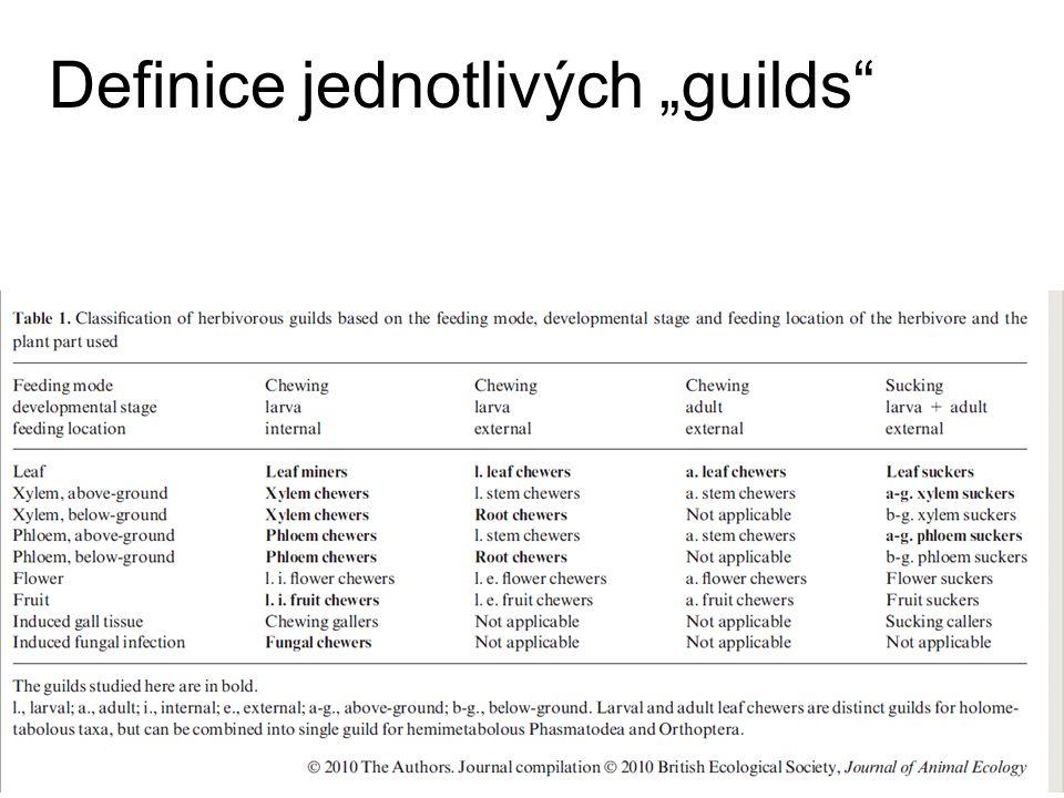 """Definice jednotlivých """"guilds"""""""
