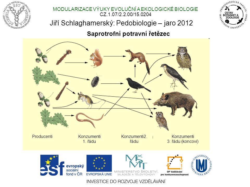 Přísun a akumulace organické látky v různých biomech Pedobiologie: saprotrofní potravní řetězec