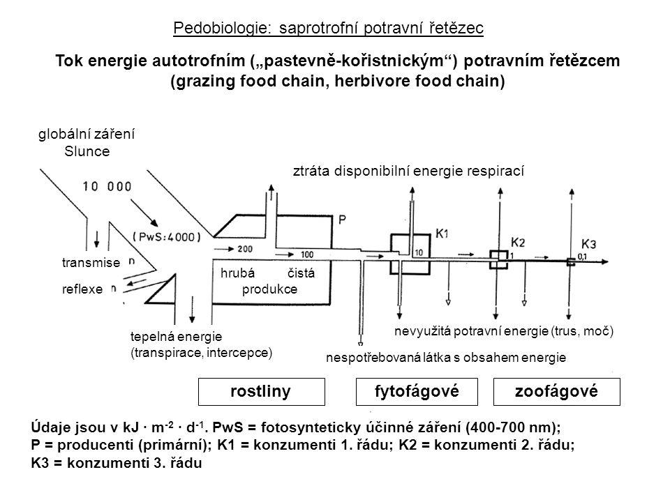 """Tok energie autotrofním (""""pastevně-kořistnickým ) potravním řetězcem (grazing food chain, herbivore food chain) ztráta disponibilní energie respirací nevyužitá potravní energie (trus, moč) nespotřebovaná látka s obsahem energie tepelná energie (transpirace, intercepce) globální záření Slunce rostlinyfytofágovézoofágové reflexe transmise hrubáčistá produkce Údaje jsou v kJ ∙ m -2 ∙ d -1."""