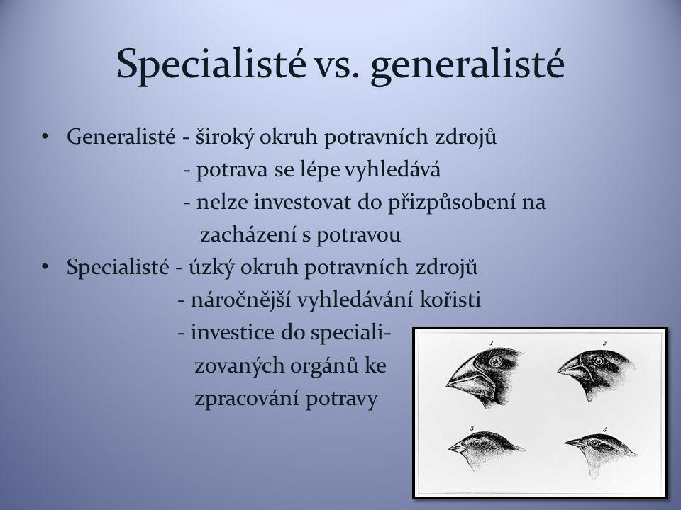 Koexistence druhů Specializace umožňuje koexistenci druhů př. velcí savci Afriky, rybožraví ptáci