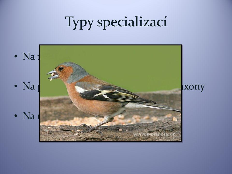Typy specializací Na 1 druh Na příbuzné druhy nebo příbuzné taxony Na určitou část těla více taxonů