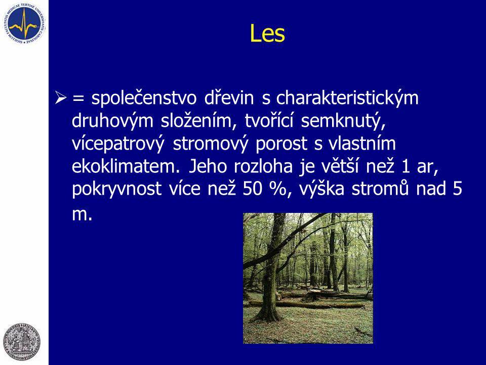 Les  = společenstvo dřevin s charakteristickým druhovým složením, tvořící semknutý, vícepatrový stromový porost s vlastním ekoklimatem. Jeho rozloha
