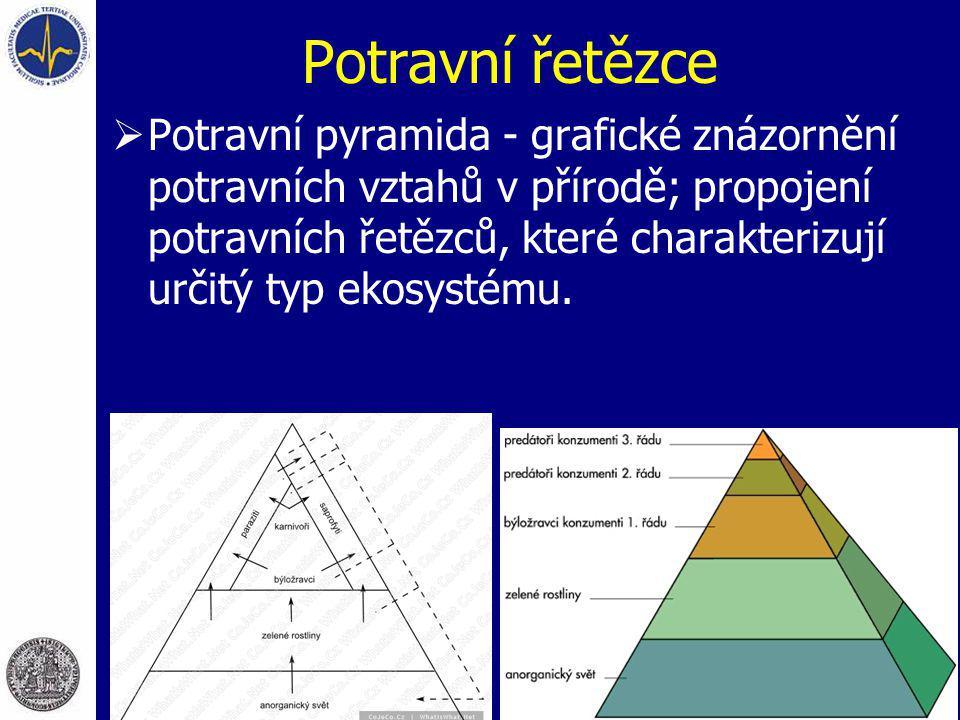 Potravní řetězce  Potravní pyramida - grafické znázornění potravních vztahů v přírodě; propojení potravních řetězců, které charakterizují určitý typ