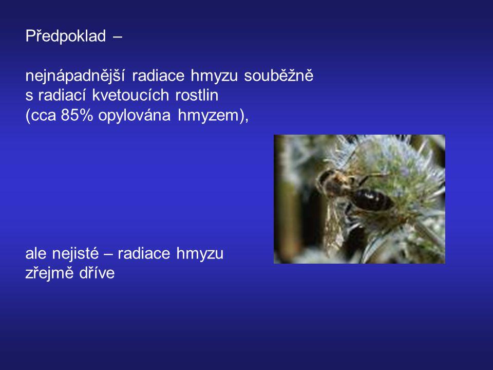 Předpoklad – nejnápadnější radiace hmyzu souběžně s radiací kvetoucích rostlin (cca 85% opylována hmyzem), ale nejisté – radiace hmyzu zřejmě dříve