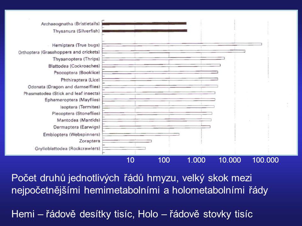 Abundance = početnost hmyzu Další ukazatel úspěšnosti taxonu Kolísání denzity hmyzí populace v čase – cíle ekologických studií: Populační cykly: Periodické, předpověditelné (predikovatelné) Regulace populací – mortalita, natalita, emigrace, imigrace: vyrovnání hustoty populace Pokud regulace funguje s prodlevou cyklické chování