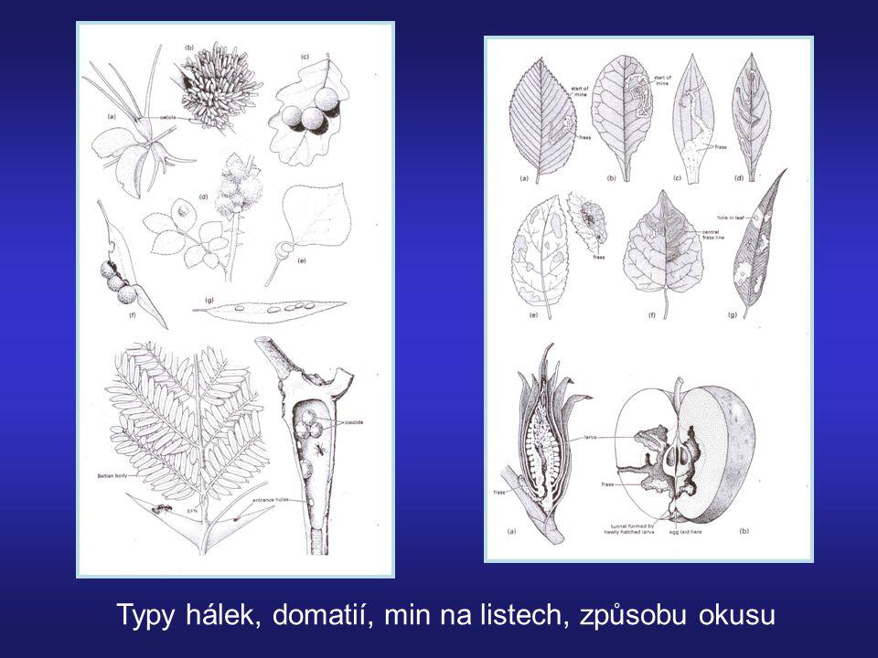 Dešťové srážky – vliv přímý (atak) nebo nepřímý = vliv sezónních srážek na růst živných rostlin 3% hmyzu – vodní Řada dalších- vodní larvy Specializované, efemerní biotopy Vliv na výskyt patogenních hub hmyzu