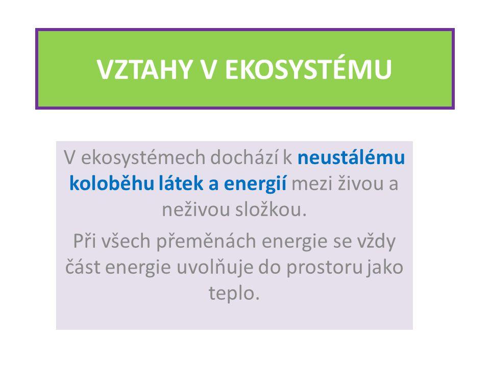 VZTAHY V EKOSYSTÉMU V ekosystémech dochází k neustálému koloběhu látek a energií mezi živou a neživou složkou.