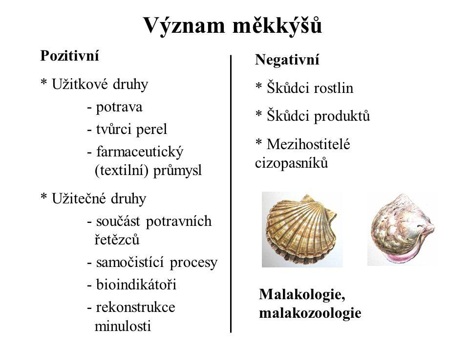 Význam měkkýšů Pozitivní * Užitkové druhy - potrava - tvůrci perel - farmaceutický (textilní) průmysl * Užitečné druhy - součást potravních řetězců - samočistící procesy - bioindikátoři - rekonstrukce minulosti Negativní * Škůdci rostlin * Škůdci produktů * Mezihostitelé cizopasníků Malakologie, malakozoologie