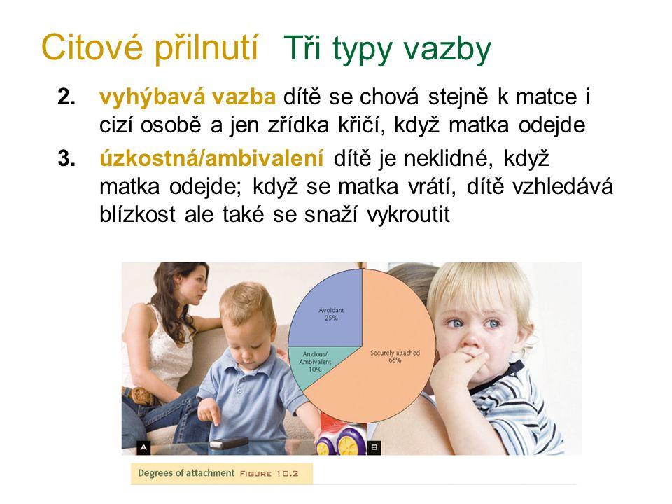 2.vyhýbavá vazba dítě se chová stejně k matce i cizí osobě a jen zřídka křičí, když matka odejde 3.úzkostná/ambivalení dítě je neklidné, když matka od