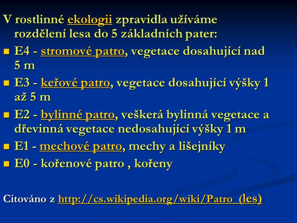 PATRO KEŘOVÉ – vegetace ve výšce 1 – 5m.