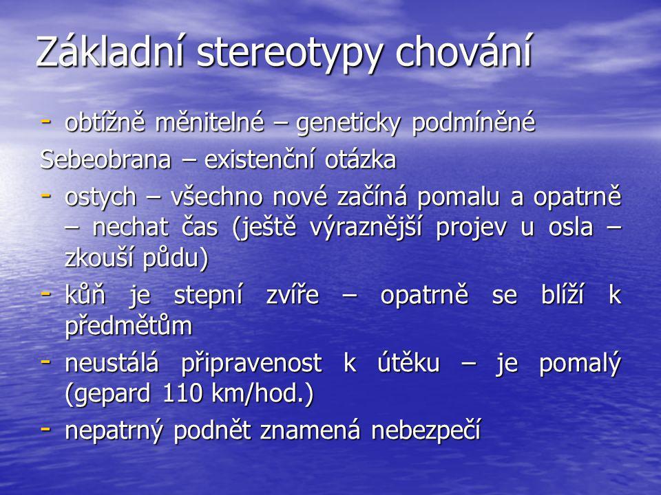 Základní stereotypy chování - obtížně měnitelné – geneticky podmíněné Sebeobrana – existenční otázka - ostych – všechno nové začíná pomalu a opatrně –