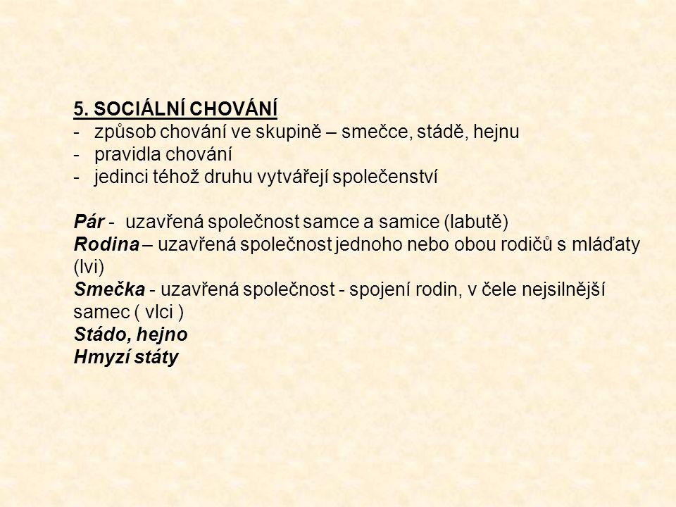 5. SOCIÁLNÍ CHOVÁNÍ -způsob chování ve skupině – smečce, stádě, hejnu -pravidla chování -jedinci téhož druhu vytvářejí společenství Pár - uzavřená spo