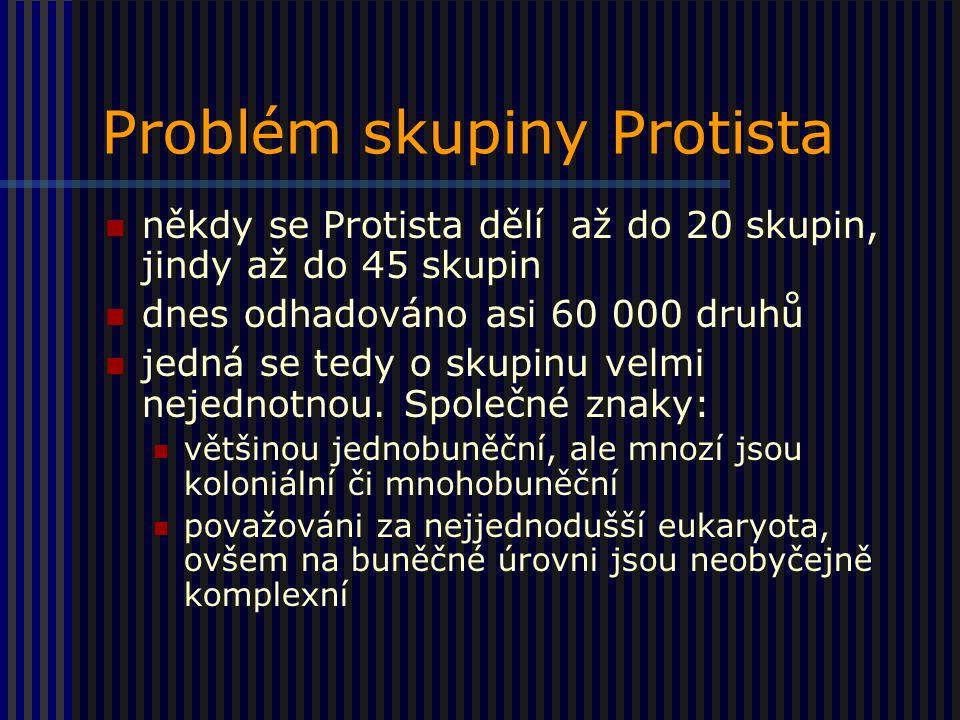 Problém skupiny Protista někdy se Protista dělí až do 20 skupin, jindy až do 45 skupin dnes odhadováno asi 60 000 druhů jedná se tedy o skupinu velmi nejednotnou.