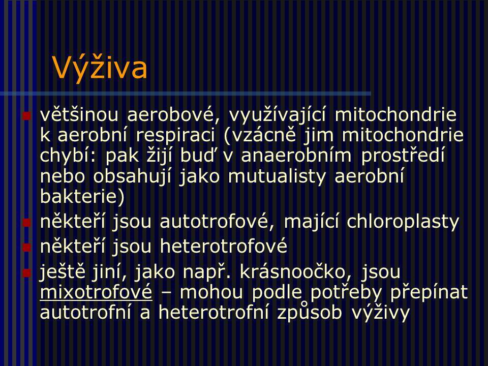 Výživa většinou aerobové, využívající mitochondrie k aerobní respiraci (vzácně jim mitochondrie chybí: pak žijí buď v anaerobním prostředí nebo obsahují jako mutualisty aerobní bakterie) někteří jsou autotrofové, mající chloroplasty někteří jsou heterotrofové ještě jiní, jako např.