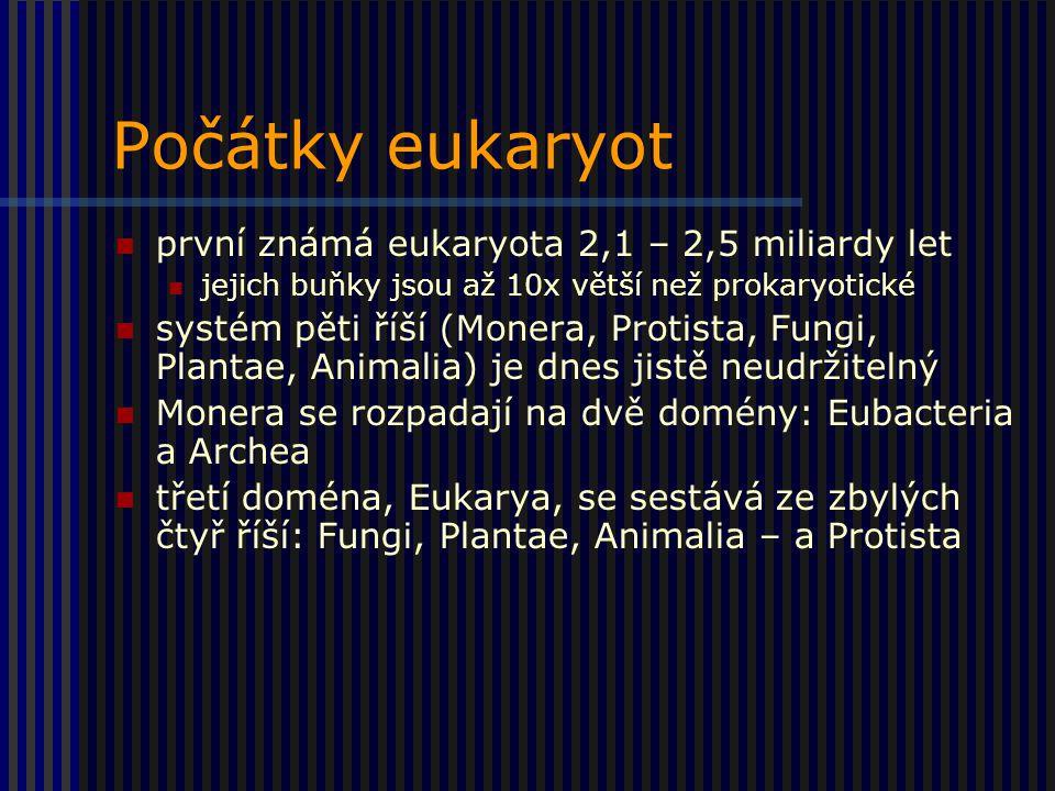 Počátky eukaryot první známá eukaryota 2,1 – 2,5 miliardy let jejich buňky jsou až 10x větší než prokaryotické systém pěti říší (Monera, Protista, Fungi, Plantae, Animalia) je dnes jistě neudržitelný Monera se rozpadají na dvě domény: Eubacteria a Archea třetí doména, Eukarya, se sestává ze zbylých čtyř říší: Fungi, Plantae, Animalia – a Protista