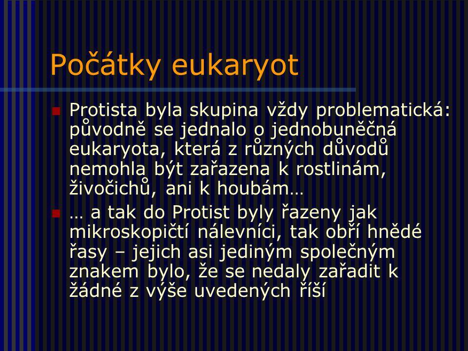 Počátky eukaryot Protista byla skupina vždy problematická: původně se jednalo o jednobuněčná eukaryota, která z různých důvodů nemohla být zařazena k rostlinám, živočichů, ani k houbám… … a tak do Protist byly řazeny jak mikroskopičtí nálevníci, tak obří hnědé řasy – jejich asi jediným společným znakem bylo, že se nedaly zařadit k žádné z výše uvedených říší