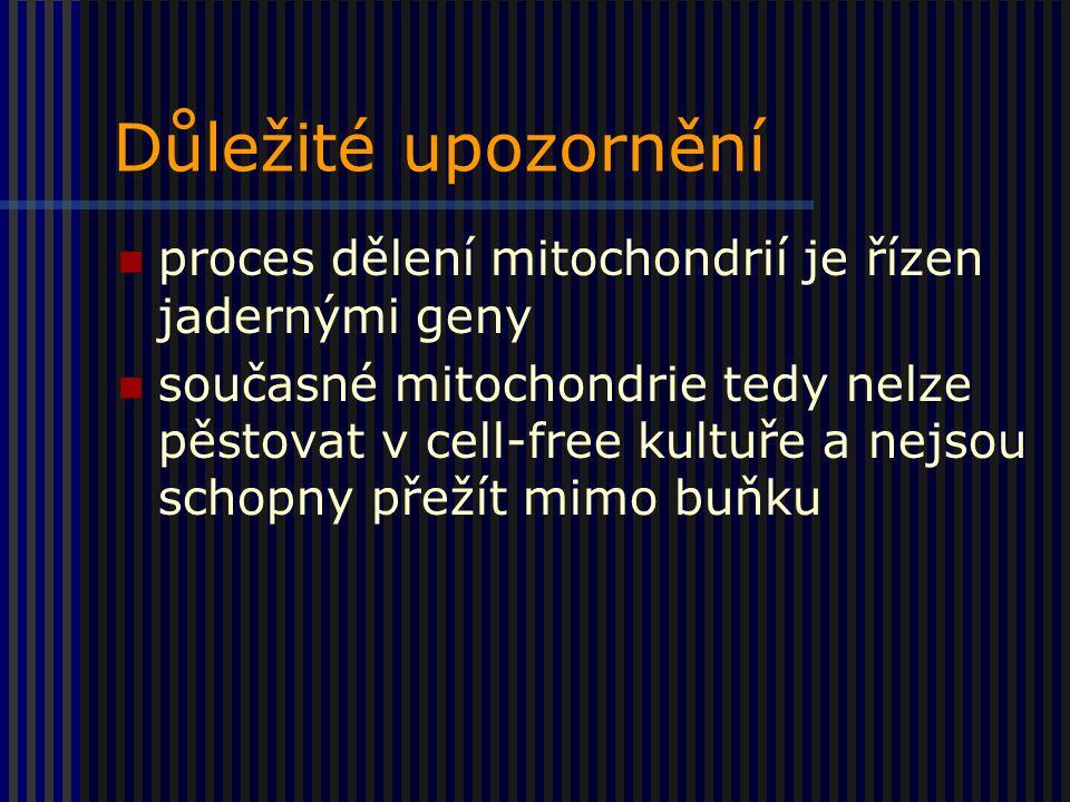 Důležité upozornění proces dělení mitochondrií je řízen jadernými geny současné mitochondrie tedy nelze pěstovat v cell-free kultuře a nejsou schopny přežít mimo buňku