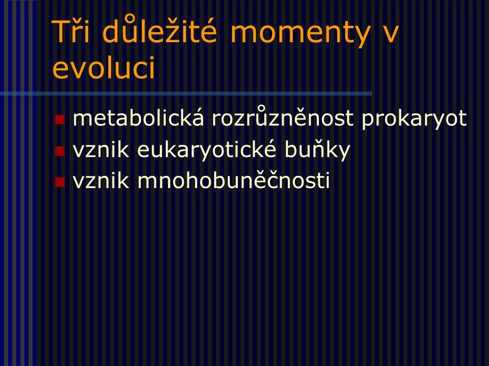 Tři důležité momenty v evoluci metabolická rozrůzněnost prokaryot vznik eukaryotické buňky vznik mnohobuněčnosti