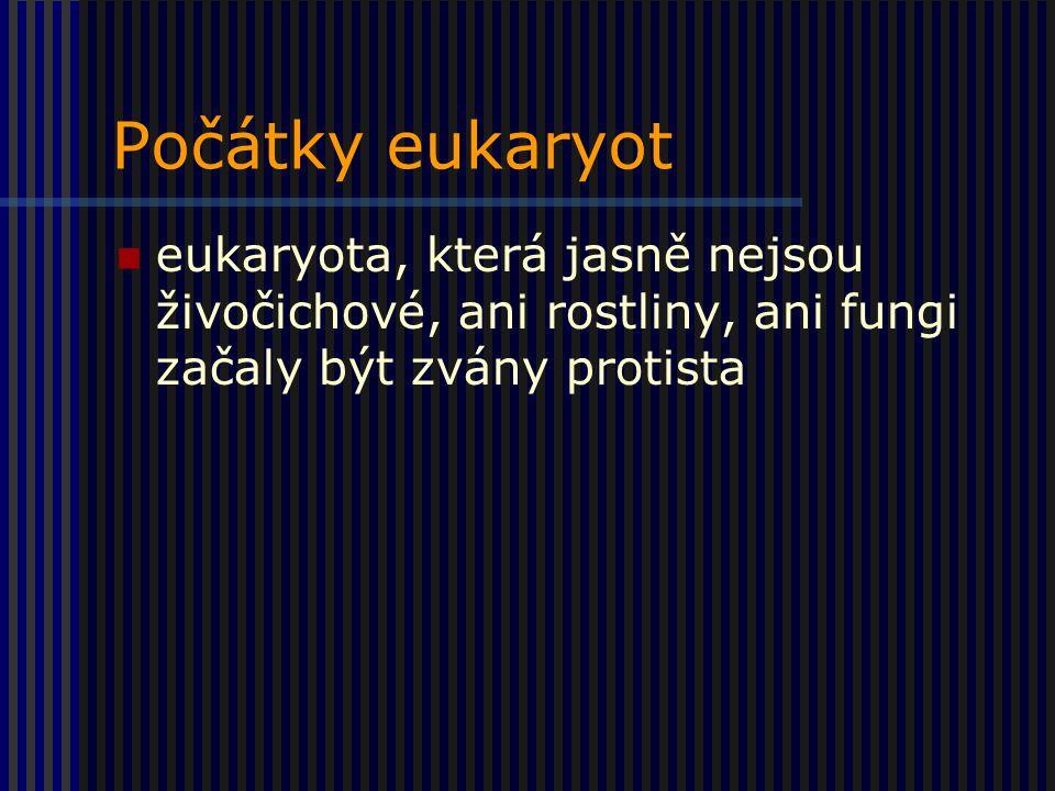 Počátky eukaryot eukaryota, která jasně nejsou živočichové, ani rostliny, ani fungi začaly být zvány protista